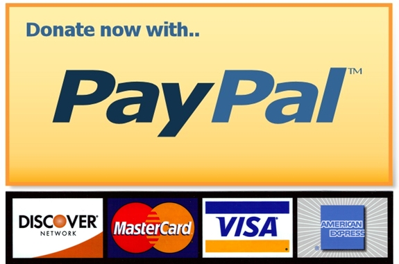 transfer money from paysafecard to paypal